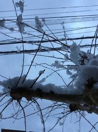 積雪 - 帽子工房 布布