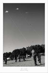 凧 - その弐 - - 夢幻泡影