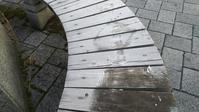 霜が降りる寒さ - 広島瀬戸内新聞ニュース(社主:さとうしゅういち)