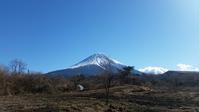 小寒の青木ヶ原樹海 - 富士のふもとの農業日誌