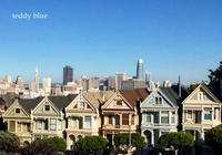 New Year from San Francisco! ニューイヤー フロム サンフランシスコ - teddy blue