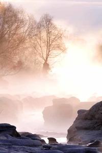 多摩川の霧・水墨画の世界 - 萩原義弘のすかぶら写真日記