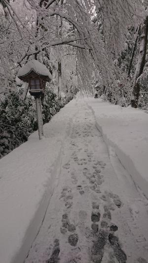 雪の白山比咩神社 - ユーキのいんぎらぁと日記