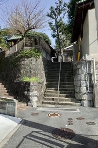 Y字路階段 平行階段 - 設計通信2 / 気になるカメラ、気まぐれカメラ