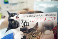 猫とLOVE LOVE - sky blue drop~14ニャンズトネコハウス//