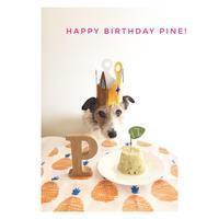 pineさんの誕生日。 - pineのあしおと