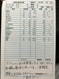 検査結果 - 京のスナイパーとハイパードッグ