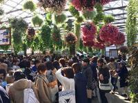 2/4予約殺到につきバス増便しました≪3つの特典付≫あったか花と鳥の楽園!掛川花鳥園「ことり万博」でことり三昧バスツアー - 日帰りツアー・社会見学・東京観光・体験イベン