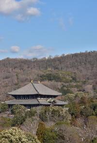 奈良二月堂界隈 - 高原に行きたい