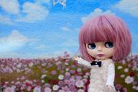 恵比寿~渋谷 お散歩撮影の続き & BGロケ地巡りのフライング - T's Photo Diary2(Grass Field*)