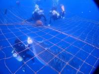 1月18日ボートも海も貸切ダイビング - 沖縄・恩納村のダイビング・青の洞窟体験ダイビング・スノーケルご紹介