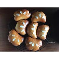 3月のレッスンのご案内 - 横浜パン教室tocotoco〜ワンランク上のパン作り〜