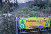 クリスマスツリーをリサイクル - tony☆