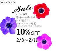 原種クリスマスローズ - さにべるスタッフblog     -Sunny Day's Garden-
