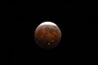 1月30日は皆既月蝕!ブルームーンだけど赤い月だ! - Air Born Japan 日本の空を、楽しもう!