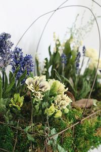 「アベイユフルール球根花の箱庭」WS参加者募集 - きままなクラウディア