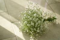 花と向き合う。 - ナナイロノート