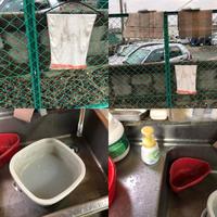朝のおトイレ掃除と手洗い… - ウレタン屋のつぶやき