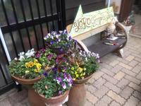 Yoko Cottage Garden 岬の庭の四季 2、冬のビオラ - Flygarden / Yoko Cottage Garden・岬の庭物語