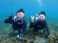 海は凪ぎ♪カメいっぱい体験ダイビング! - 八丈島ダイビングサービス カナロアへようこそ!