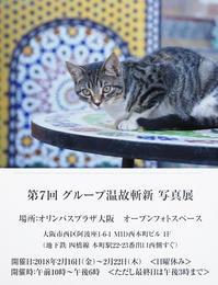 海外旅と写真展のお知らせ~旅カメラ機材の紹介も! - 模糊の旅人