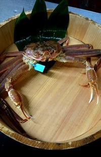 蟹さんご挨拶 - 金沢犀川温泉 川端の湯宿「滝亭」BLOG