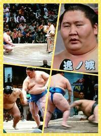 大相撲おもしろいね - グランマの戯れ