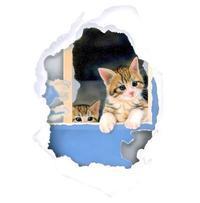 【展覧会】ねこもふたり展3/3〜3/30#ねこもふたり - junya.blog(猫×犬)リアリズム絵画