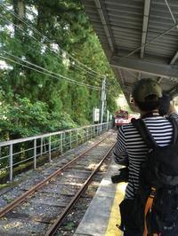 湖上に浮かぶ秘境駅!井川線に乗って奥大井湖上駅への旅。 - 子どもと暮らしと鉄道と