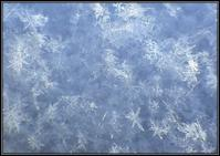 雪が降って来た - 好い加減に過ごす2