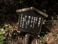 黒川温泉 旅館こうの湯(阿蘇郡南小国町満願寺) - 今日は何処まで