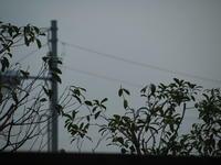 曇りのち晴れ・・・・・! - 一場の写真 / 足立区リフォーム館・頑張る会社ブログ