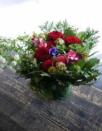 ご新居のお祝いにアレンジメント。「赤系で」。新川2条にお届け。 - 札幌 花屋 meLL flowers