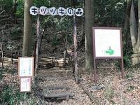 落合キツツキの森 - つれづれ日記