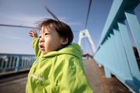 どこかにお花は咲いてるかな?水元公園で冬散歩 - Full of LIFE