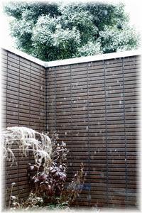 大変!東京でも大雪。そしてボケボケな夫婦の話。 - Less is more