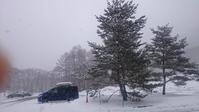 雪が降る 1/22 - つくしんぼ日記 ~徒然編~
