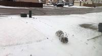 20度の翌日は雪。 - 今、楽しいことについて。
