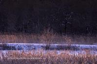 あきいろ、ふゆいろ - ekkoの --- four seasons --- 北海道