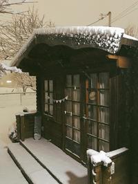 大雪〜 - やまぼうし日記