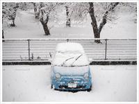 * 雪 * - * gonta day's *