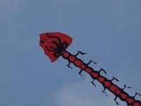 『岐阜県笠松町 第13回木曽川凧あげまつり大会』 - 自然風の自然風だより