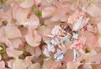 THE SWEET PEA  FAIRY - Fiore Spazio 花便り
