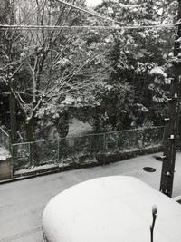 雪の日には - 昔の乙女の水彩画ぶろぐ