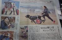 いちごの車イス!o(^^)o - taka@でございます!