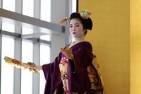 京舞 - 一茶の道楽日記