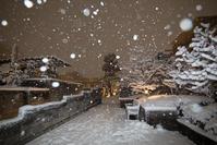 雪景色♪ - 光の贈りもの