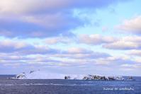 雪のスコトン岬から - 礼文島★ハナとわたし