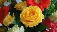 花束 - ルンルンのルン