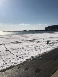 江ノ島で凧あげ - 青空自主保育てぃだのふぁ ブログ